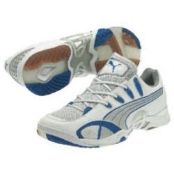Puma Accelerate V white-blue