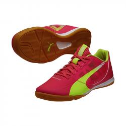 PUMA Evo Speed Sala Futsal Pink Gelb F01