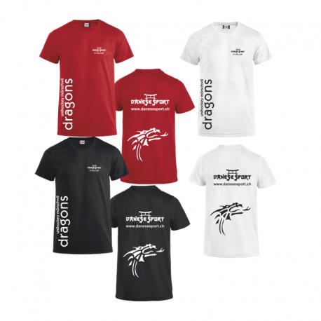 UHC Mörschwil Dragons Clique Trainingsshirt